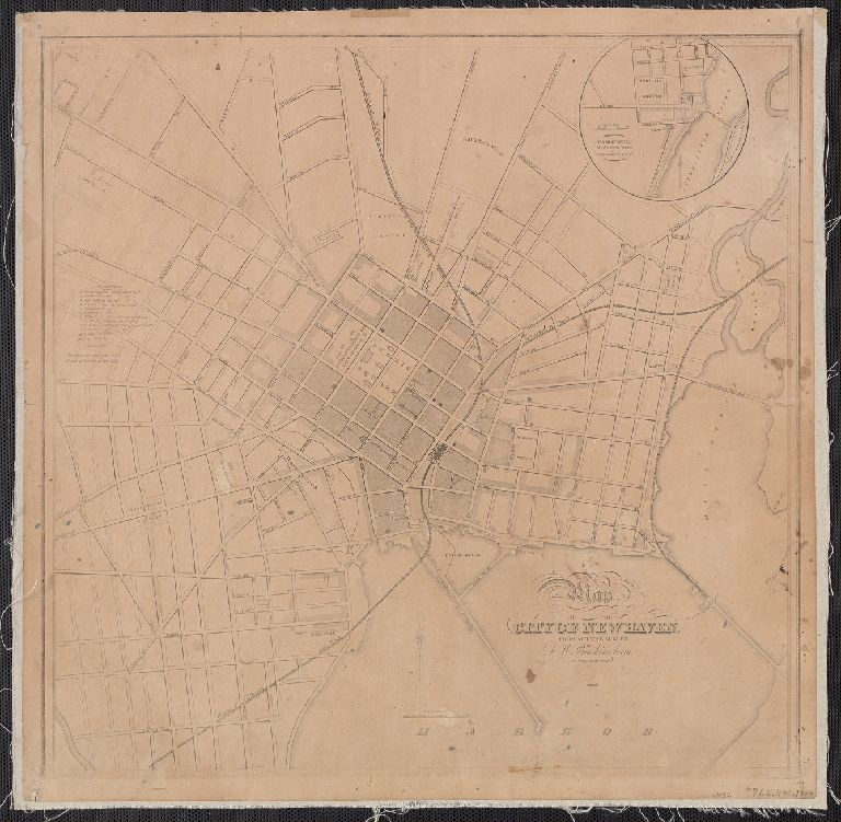 Map of the city of New Haven : from actual survey by D.W. Buckingham, county surveyor.